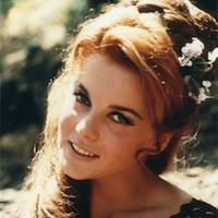 Ann-Margret flower