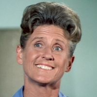 A <i>Stargayzing</i> Tribute to Ann B. Davis' Needlepoint