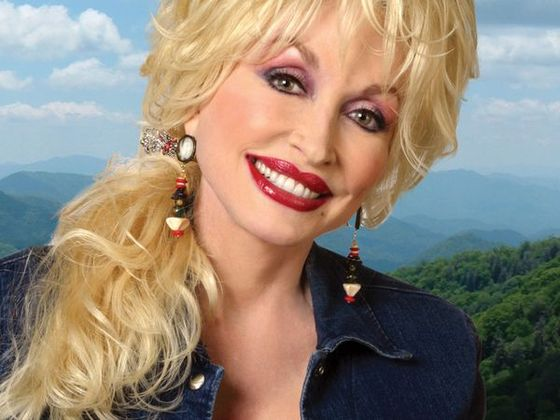 Dolly Parton ponytail