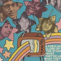 <strong><i>TV Superstars</i> by Richard Robinson—1973</strong>